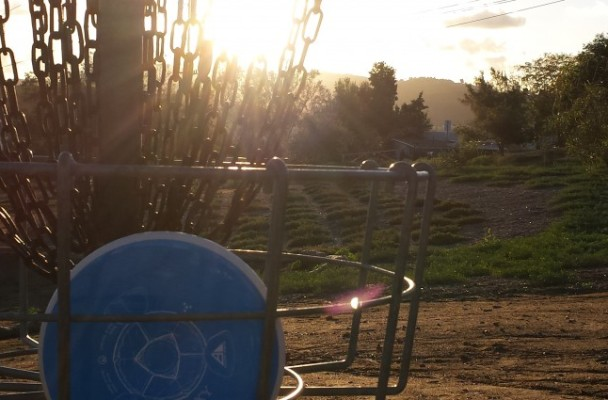 Welcome to Noodle Arm Disc Golf